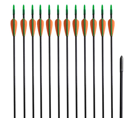 """Pijlen voor recurveboog standaard 30"""" 0,6 cm glasvezel 12 stuks[1/5]"""