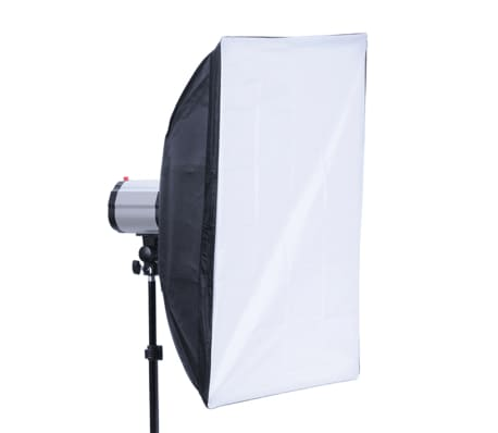 Studio Set: 2 Flash Lights 120 W/s with 2 Tripods & 2 Softboxes[6/10]