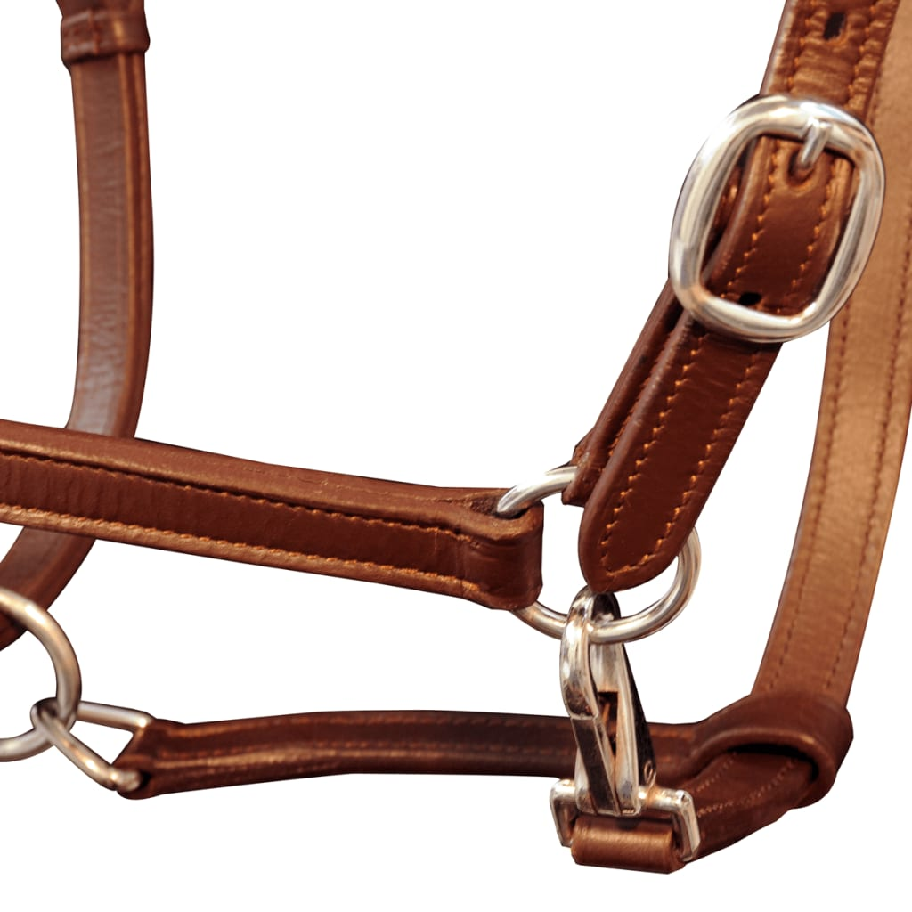 vidaXL Halster verstelbaar pony echt leer bruin