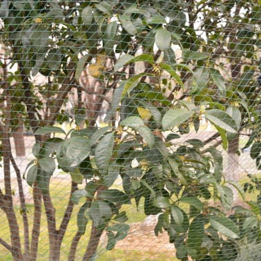 vidaXL tinklas nuo paukščių, 6x6 m, 2 vnt., PP[2/4]