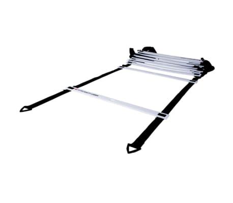 pure2improve agility leiter 450 cm p2i100050 g nstig kaufen. Black Bedroom Furniture Sets. Home Design Ideas