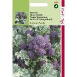 2 stuks Broccoli Summer Purple
