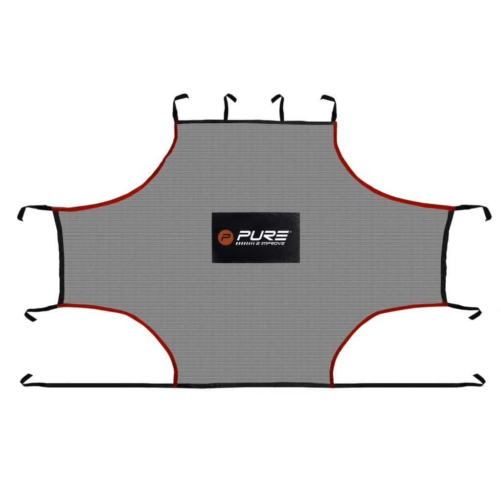 Pure2Improve Plasă de antrenament pentru interior, 275x185 cm, PE