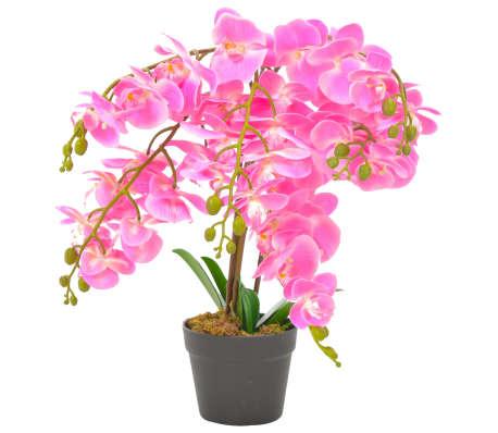 vidaXL Umetna rastlina orhideja z loncem roza 60 cm