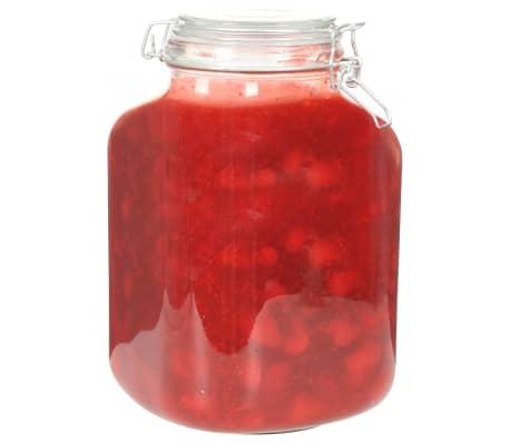vidaXL Borcane din sticlă cu închidere ermetică, 6 buc., 5 L[3/7]