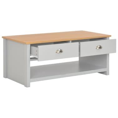 vidaXL Kavos staliukas, pilkos spalvos, 100x50x42cm[2/9]