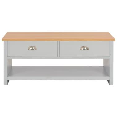 vidaXL Kavos staliukas, pilkos spalvos, 100x50x42cm[3/9]