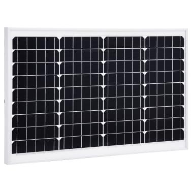 vidaXL Saulės energijos plokštė, aliuminis, apsauginis stiklas, 40W[1/9]
