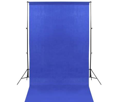 vidaXL Fotostudijos rinkinys su 13 fonų, juodas, 1,6x5m, plienas[2/7]