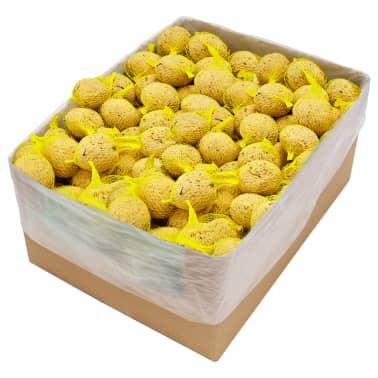 vidaXL Fat Balls with Nets 200 pcs 90 g[1/3]