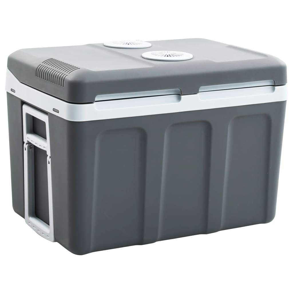 vidaXL Přenosný termoelektrický chladicí box 45 l 12 V 230 V A++