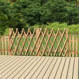 vidaXL Poorten 2 st 300x100 cm geïmpregneerd grenenhout