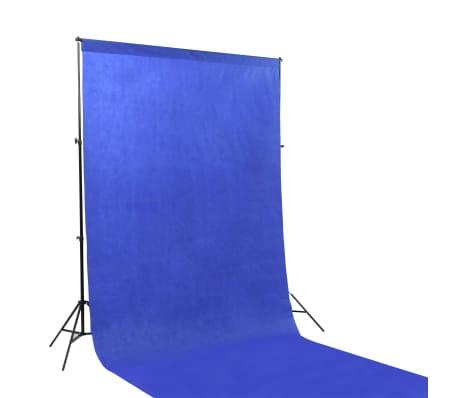 vidaXL Kit de studio photo avec toile de fond et boîte à lumière[4/14]