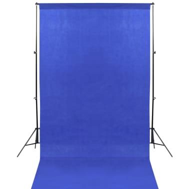 vidaXL Kit de studio photo avec éclairage et toiles de fond[3/15]