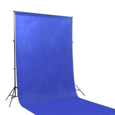 vidaXL Kit de studio photo avec éclairage et toiles de fond[4/15]