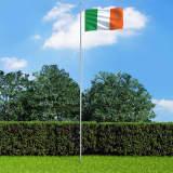 vidaXL Irsk flagg og stang aluminium 6,2 m