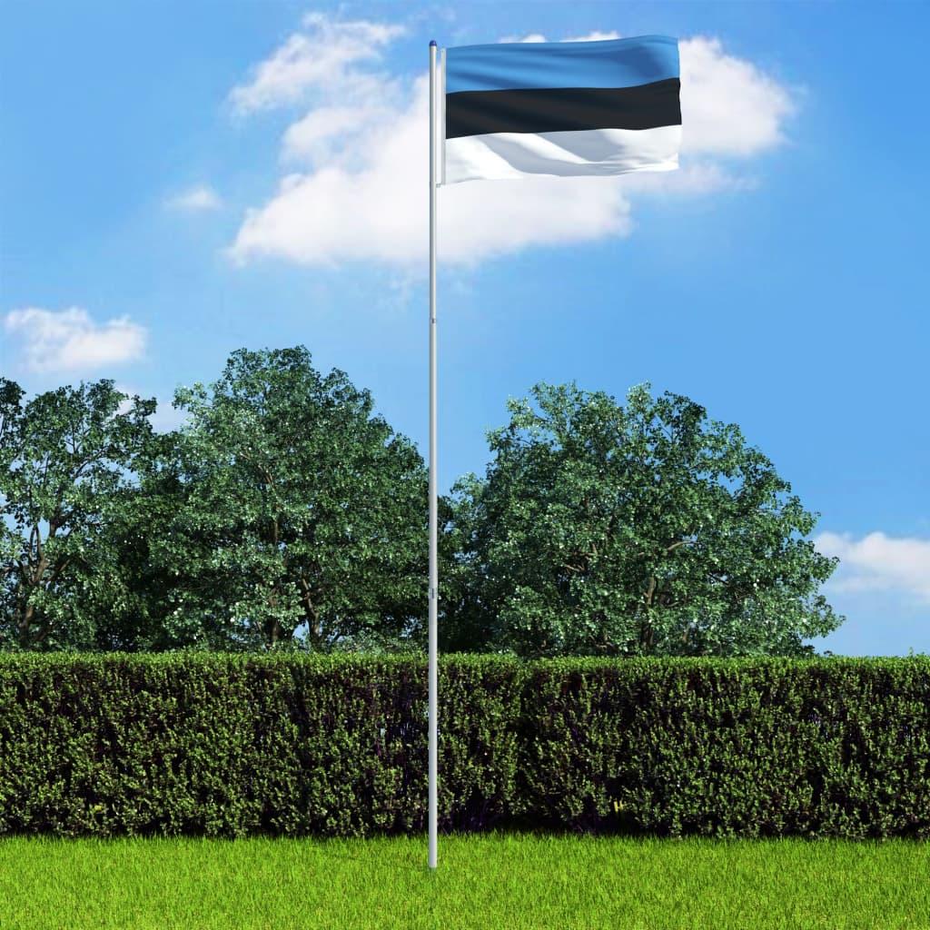 Eesti lipp ja lipumast, alum..
