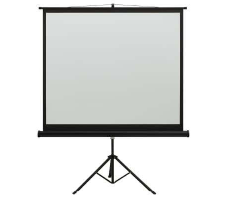 vidaXL Ecran de Projection avec Tr/épied Ecran de Projecteur Cin/éma Maison Salle de Classe Pr/ésentations en Salle de Conf/érence 50 1:1