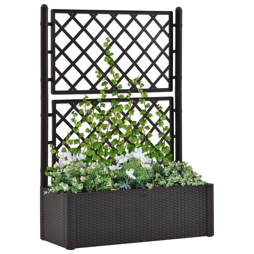 vidaXL Strat înălțat grădină cu spalier și sistem automat udare, antracit poza vidaxl.ro