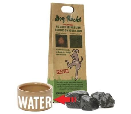 Dog Rocks Roches contre tache d'urine de chien[2/12]