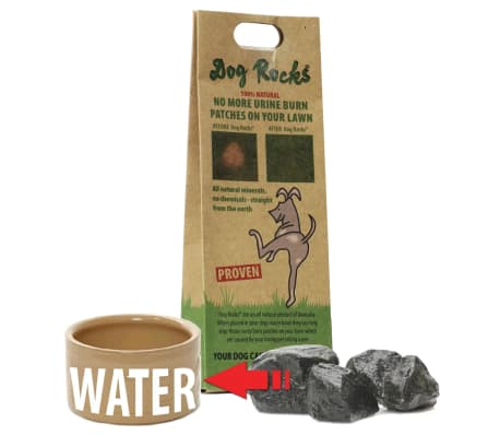 Dog Rocks Roches contre tache d'urine de chien[12/12]