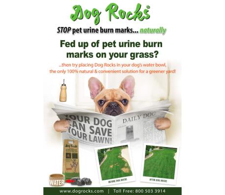 Dog Rocks Roches contre tache d'urine de chien[7/12]