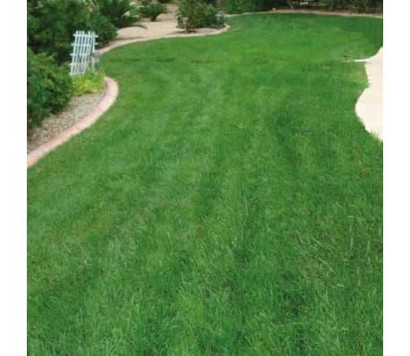 Dog Rocks Roches contre tache d'urine de chien[9/12]