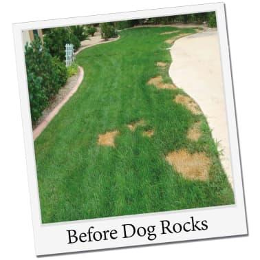 Dog Rocks Roches contre tache d