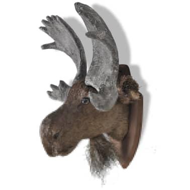 Moose Head Wall Mounted Decoration Natural Looking[3/6]
