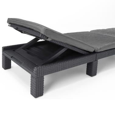 acheter bain de soleil graphite allibert daytona 213720 pas cher. Black Bedroom Furniture Sets. Home Design Ideas