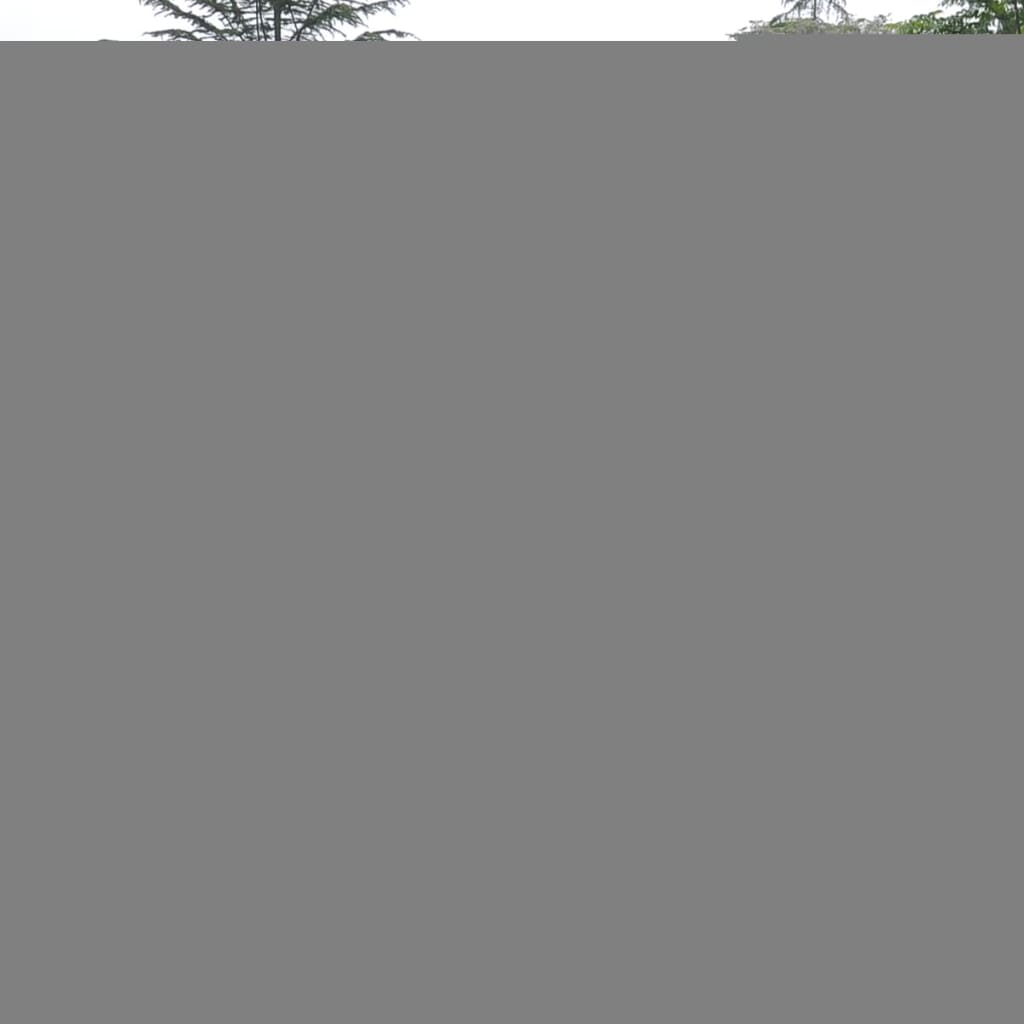 Walk In Garden Box: Outdoor Greenhouse Walk-in Portable