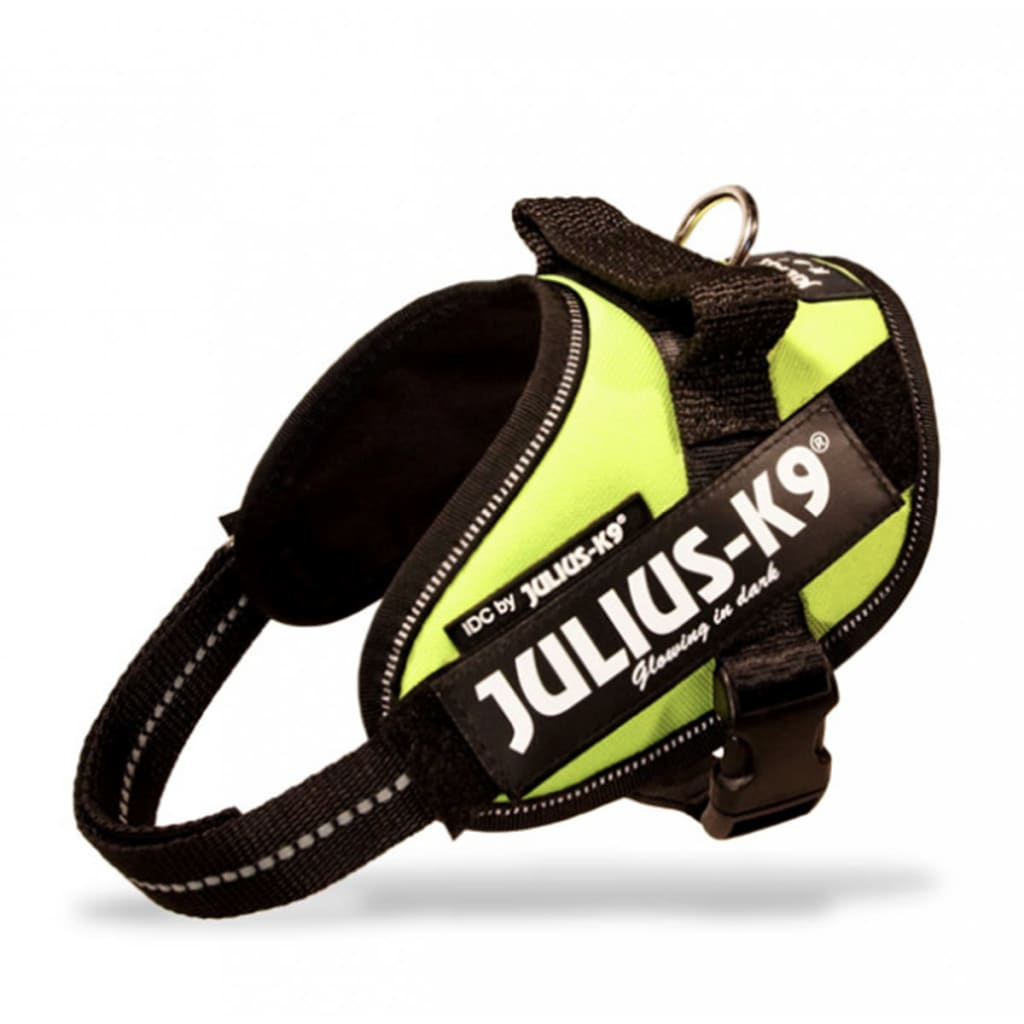 Julius Dog Harness Review