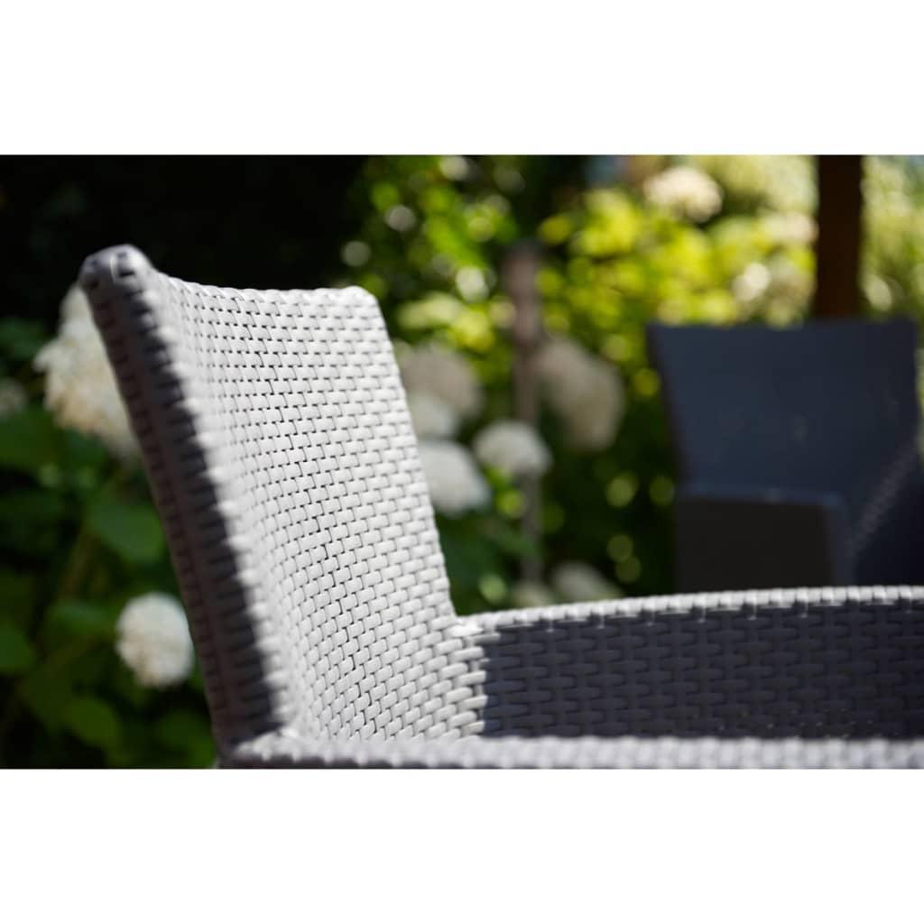 la boutique en ligne allibert chaise de salle manger de. Black Bedroom Furniture Sets. Home Design Ideas