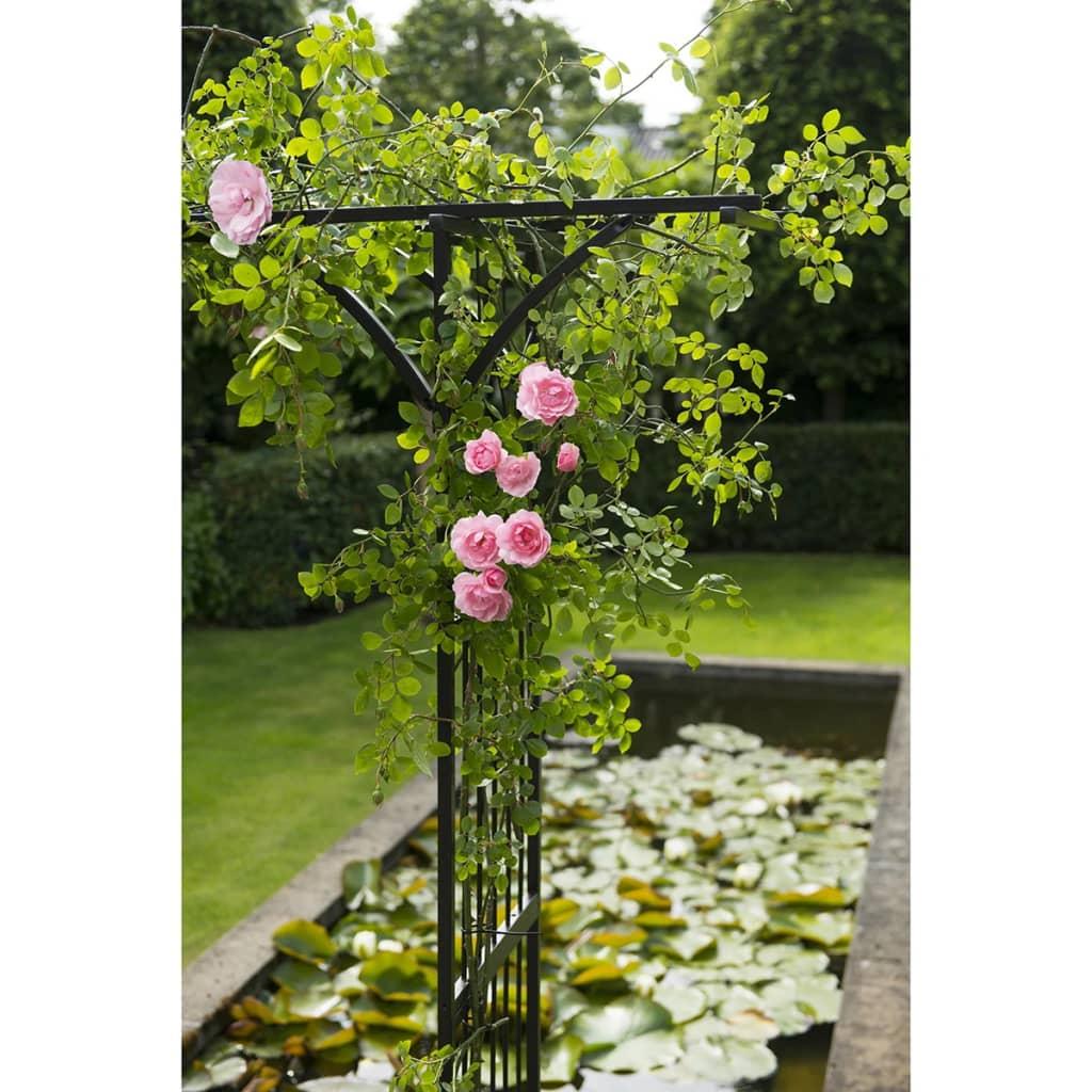 acheter nature arche pour jardin 114 x 66 x 232 cm acier noir pas cher. Black Bedroom Furniture Sets. Home Design Ideas