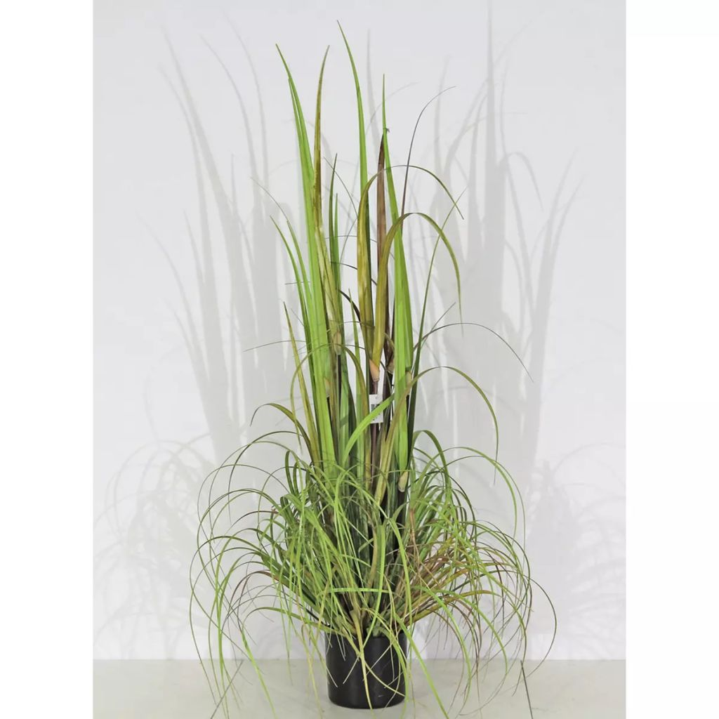 La boutique en ligne velda plante artificielle d corative for Plante decorative jardin