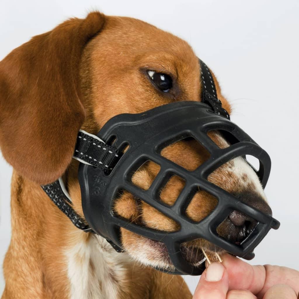 acheter trixie museli u00e8re pour chiens flex taille xl pas cher