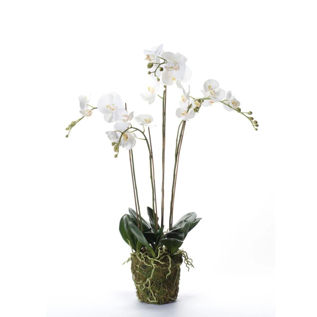 Afbeelding van Emerald Kunstplant orchidee met mos wit 90 cm 20.355