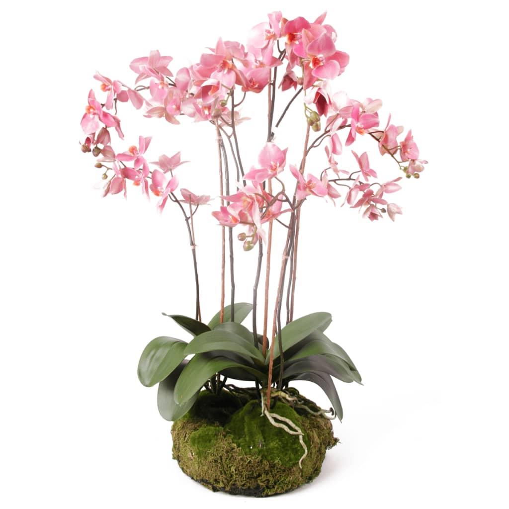 Afbeelding van Emerald Kunstplant orchidee met mos roze 75 cm 417662