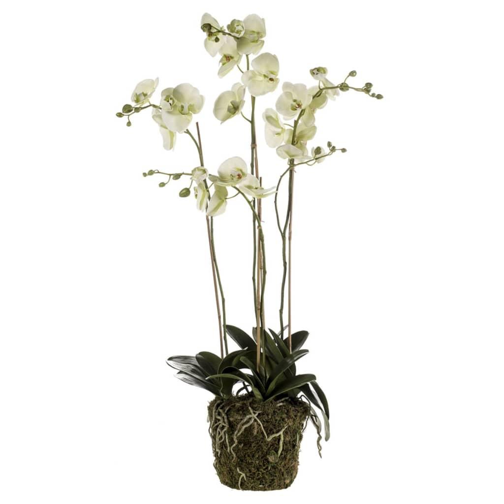 Afbeelding van Emerald Kunstplant orchidee met mos lichtgroen 419148