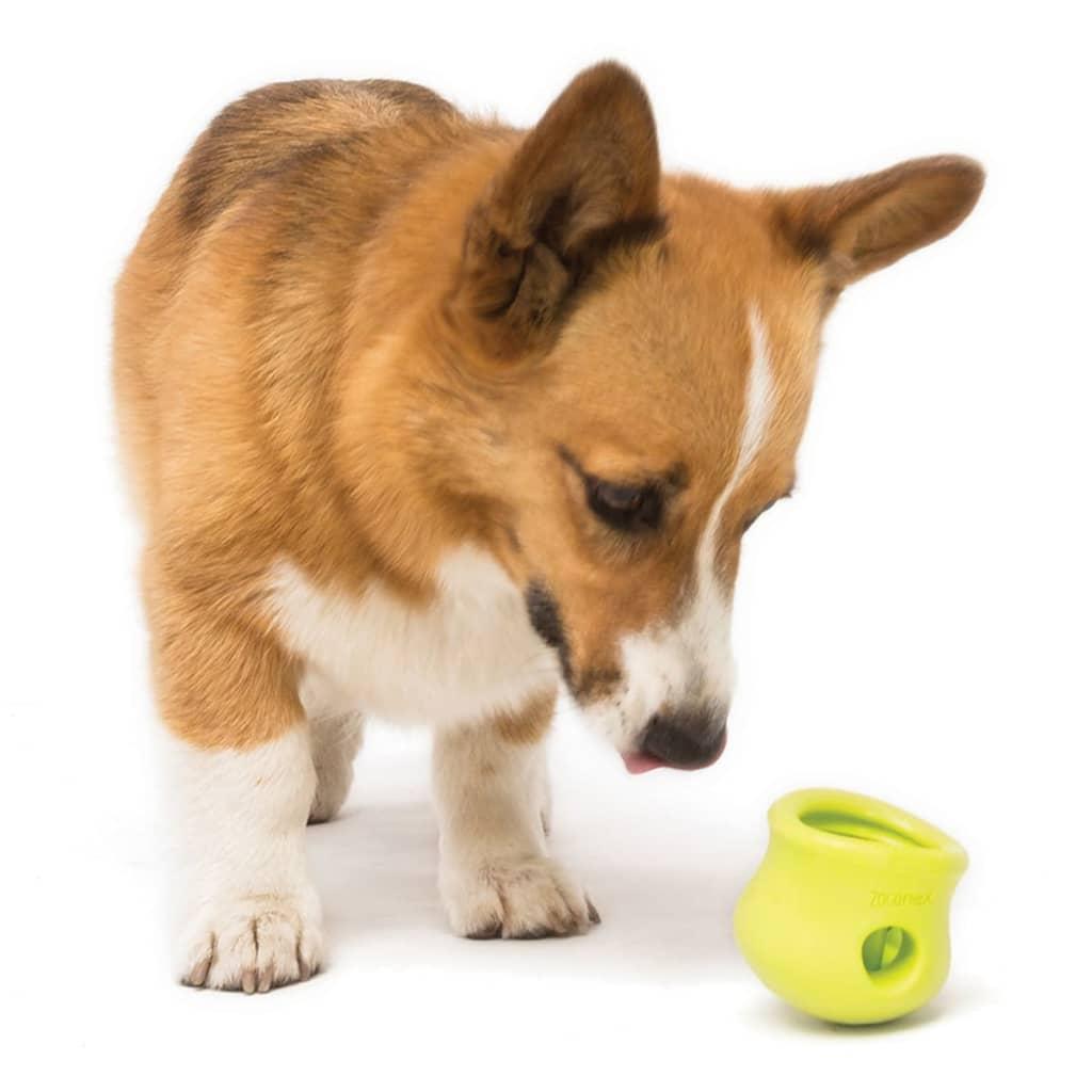 Acheter zogoflex jouet pour chiens toppl taille l vert - Jouet pour chien pas cher ...