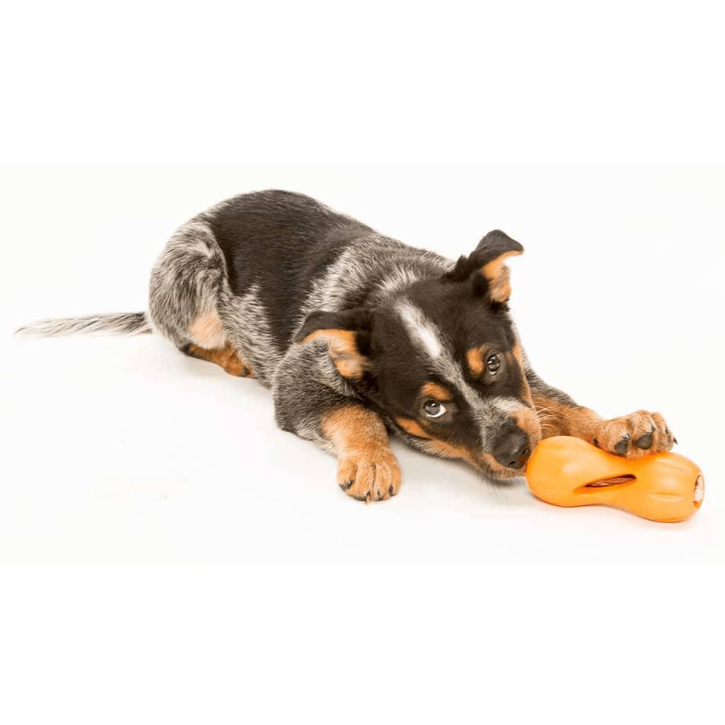 acheter zogoflex jouet de puzzle pour chiens qwizl taille l orange 3542 pas cher. Black Bedroom Furniture Sets. Home Design Ideas