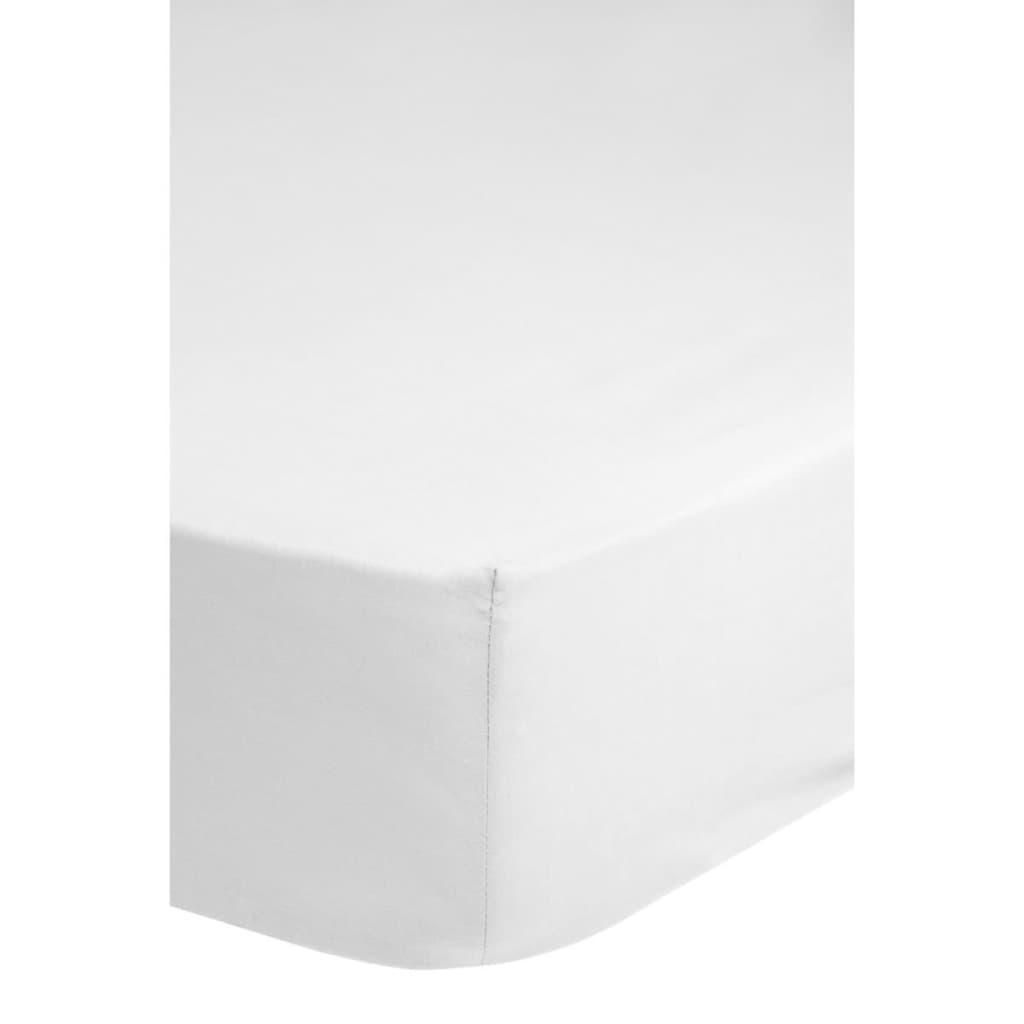 Afbeelding van Descanso Hoeslaken dubbelzijdig jersey 160/180x200 cm wit 0215.00.46