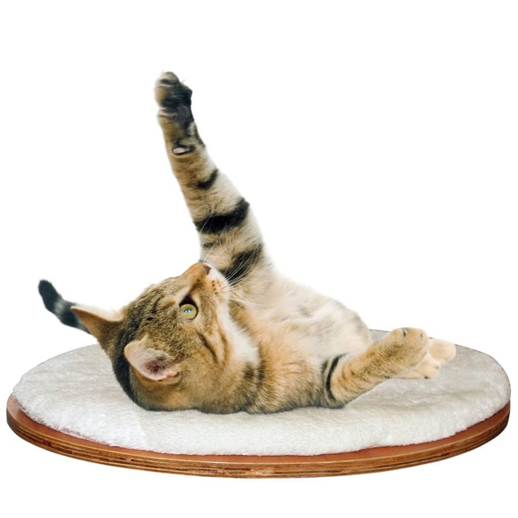Acheter kerbl lit mural pour chats dolomit 50 x 35 cm blanc 81503 pas cher - Parcours mural pour chat ...