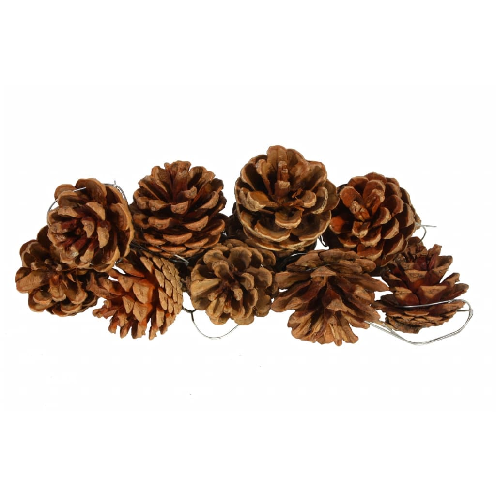 10 decorative pine cones. Black Bedroom Furniture Sets. Home Design Ideas