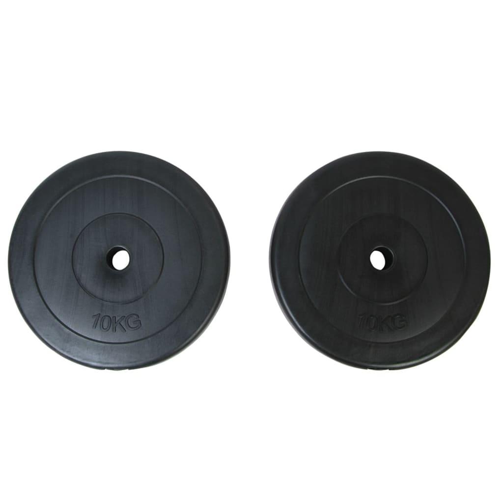 vidaXL Két darabos 10kg-os súlyzókészlet