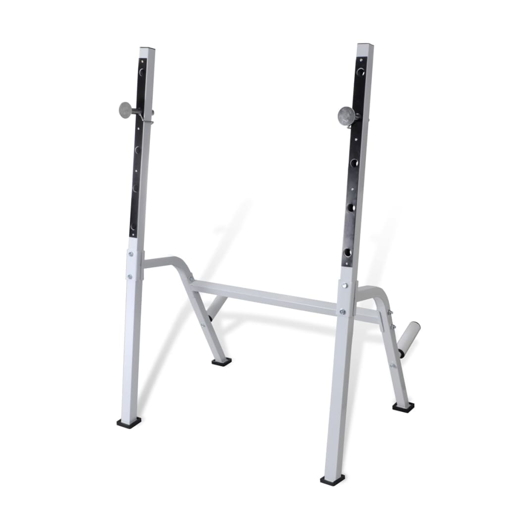 Multi Exercise Workout Bench